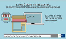Basilicata, E-Commerce in crescita
