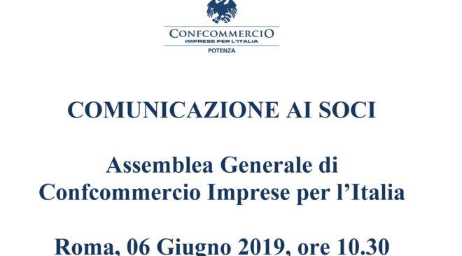 ASSEMBLEA GENERALE DI CONFCOMMERCIO IMPRESE PER L'ITALIA – Roma 06 giugno 2019 – ore 10.30